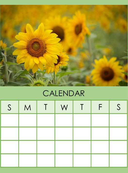 Calendar of events and Programming